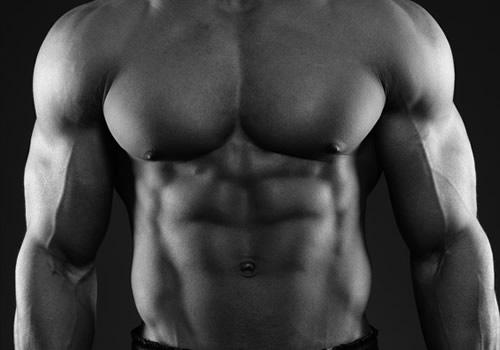 Claves para la hipertrofia muscular: Anabolismo muscular ...